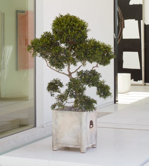 French Square Planter. Part of the Inner Gardens collection designed by Stephen Block.