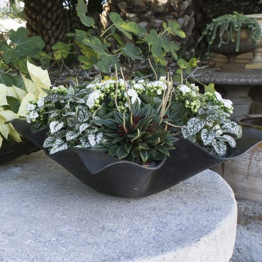 Inner Gardens large bronze handkerchief planter. modern planter, large outdoor plant pot, outdoor large planters pots, ideas for garden decor. Discovered by renowned landscape designer Stephen Block.
