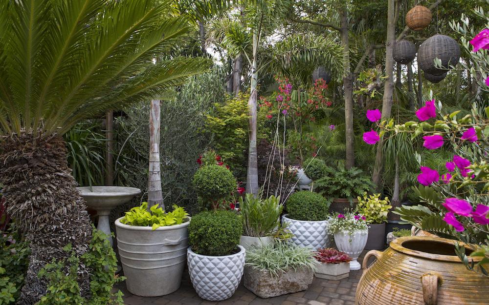 Elegant Inner Gardens