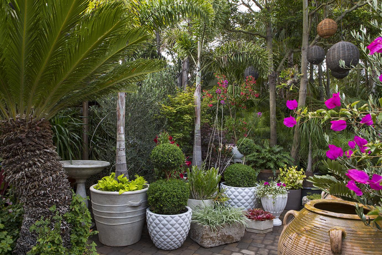 Inner Garden planters in garden