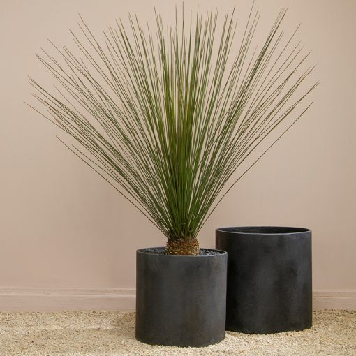 Inner Gardens Modern Cylinder in Matte Black. mid century modern planters, modern planter outdoor, black pot for plant, resin planters, modern planter pot. Designed by renowed landscape designer Stephen Block.
