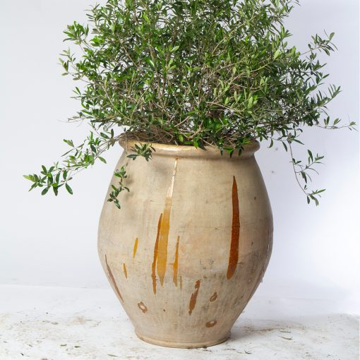 Antique terracotta pot for plants, featuring drip glaze