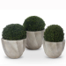 Group of Swirl Planters